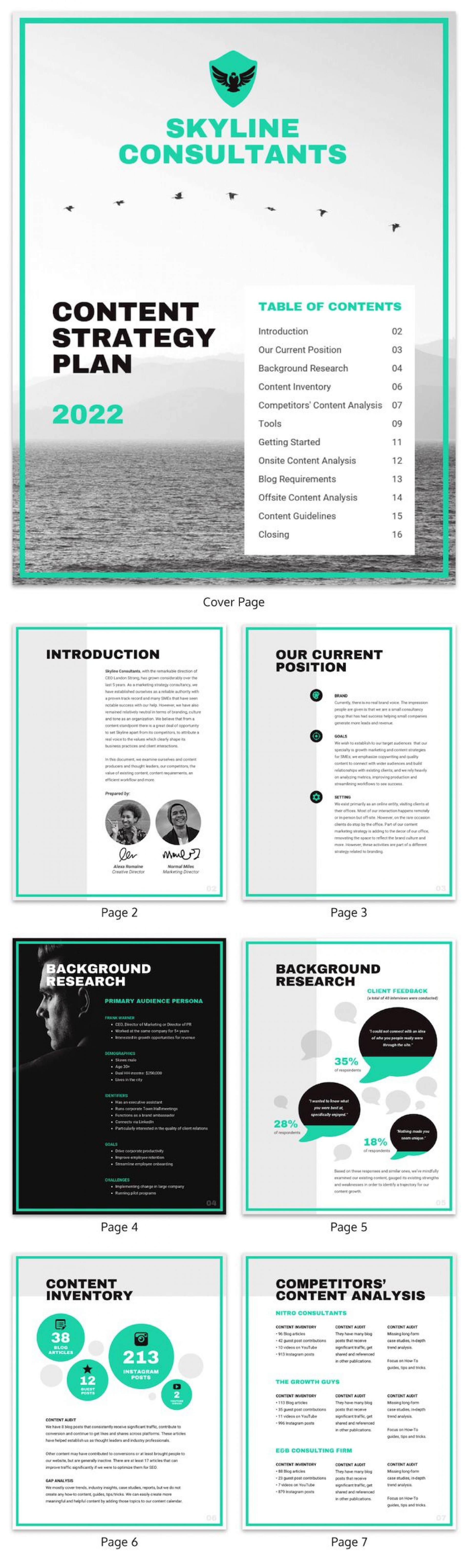 009 Dreaded Marketing Campaign Plan Template Free Design 1920
