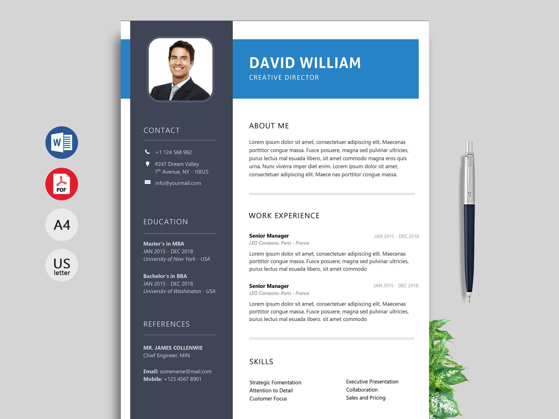 009 Excellent Creative Resume Template M Word Free Idea Full