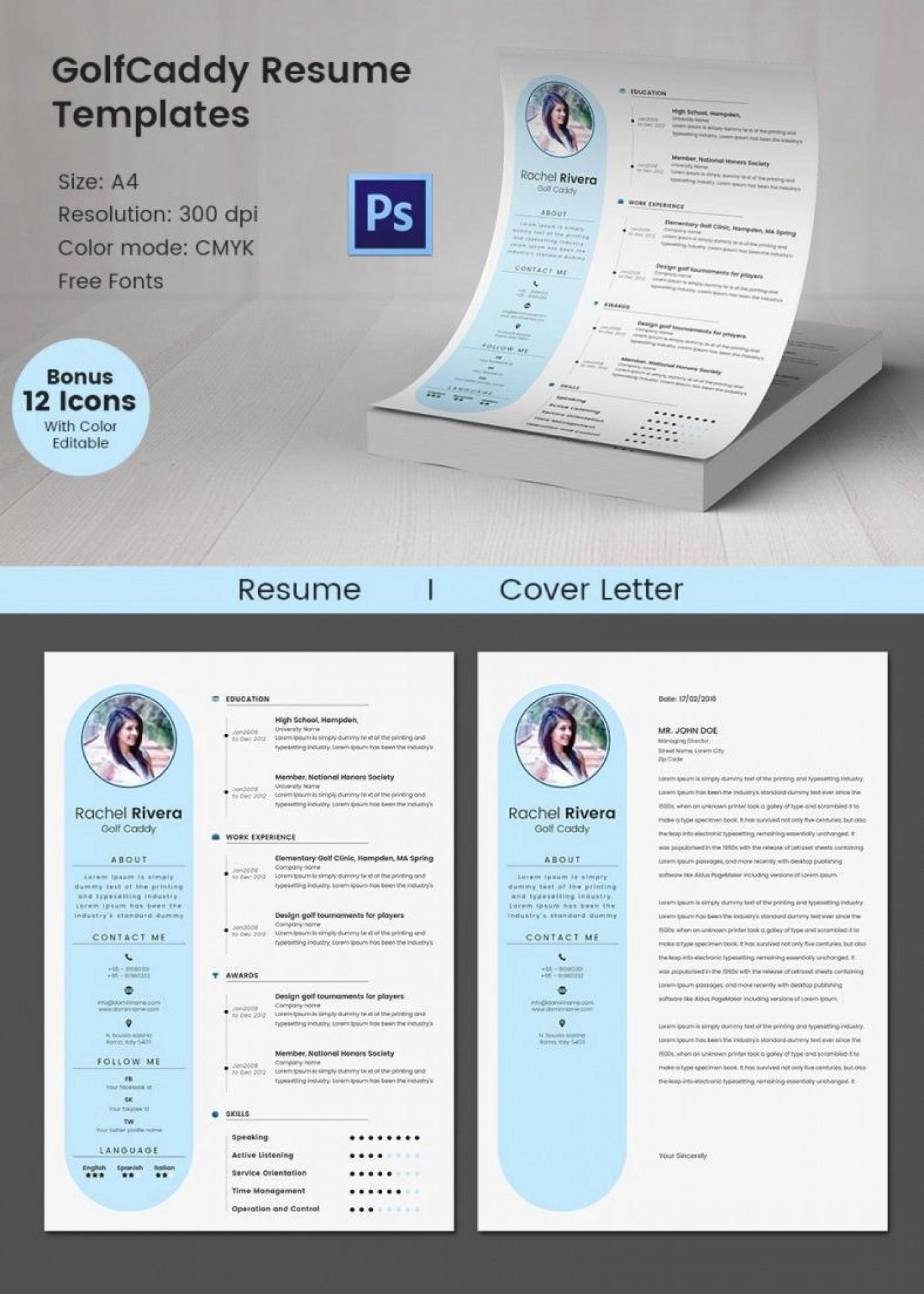 009 Excellent Software Engineering Resume Template High Def  Engineer Microsoft Word Cv Free Developer Download1400