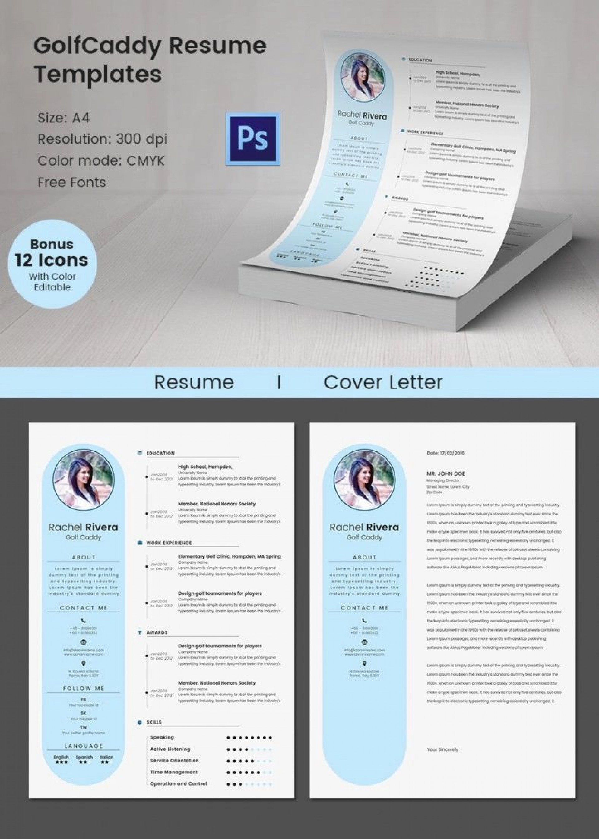 009 Excellent Software Engineering Resume Template High Def  Engineer Microsoft Word Cv Free Developer Download1920