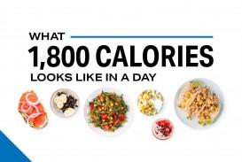 009 Fantastic Sample 1800 Calorie Meal Plan Pdf