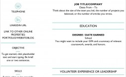 009 Fascinating Entry Level Resume Template Word Download Sample
