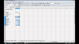 009 Fascinating Event Planner Budget Template Excel High Def  Party Planning Spreadsheet320