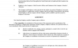 009 Fearsome Non Compete Agreement Template South Africa Example