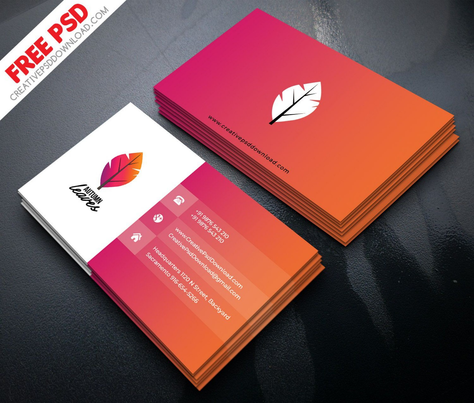 009 Frightening Simple Visiting Card Design Psd File Free Download Picture 1920