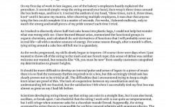 009 Impressive College Essay Format Example Idea  Examples Writing Application Sample Admission