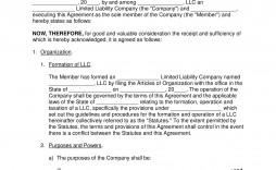 009 Incredible Llc Partnership Agreement Template Inspiration  Operating Free