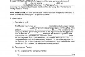 009 Incredible Llc Partnership Agreement Template Inspiration  Free Operating