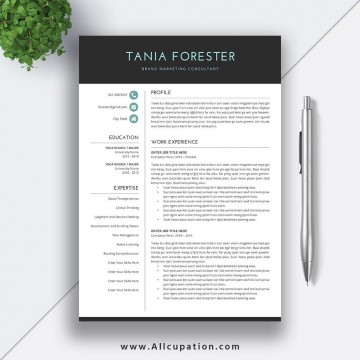 009 Incredible Resume Template Download Word Concept  Cv Free 2019 Example File360