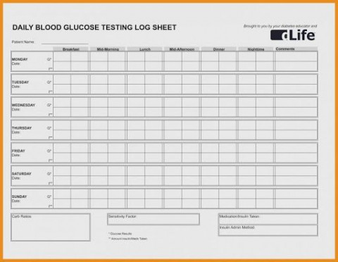 009 Magnificent Blood Glucose Spreadsheet Template Highest Quality  Tracking480
