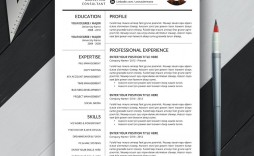 009 Magnificent Microsoft Word Resume Template 2020 High Definition  Free