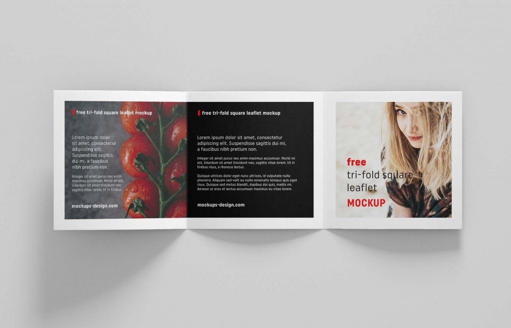 009 Magnificent Square Brochure Template Psd Free Download Inspiration Large
