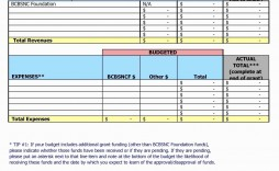 009 Outstanding Line Item Budget Format Concept  Sample Template Spreadsheet