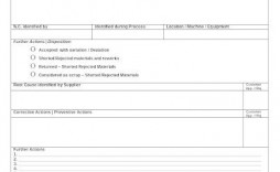 009 Phenomenal Corrective Action Report Template Picture  Doc 8d Format Pdf