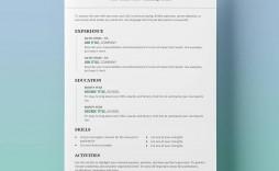 009 Phenomenal Example Cv Template Word Highest Clarity  Resume