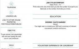 009 Phenomenal Free Professional Resume Template Microsoft Word Example  Cv 2010