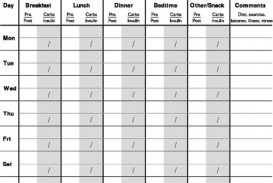 009 Remarkable Free Blood Sugar Log Template Pdf Sample