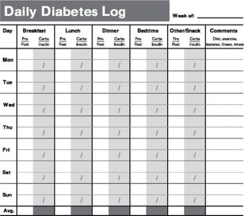 009 Remarkable Free Blood Sugar Log Template Pdf Sample 480
