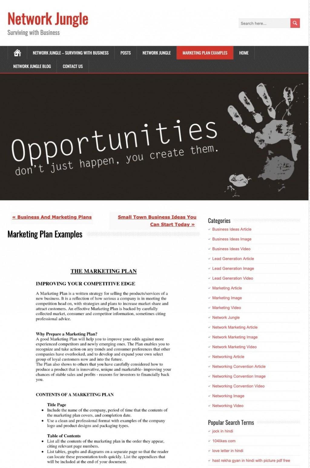 009 Sensational Digital Marketing Plan Example Pdf Image  Free Template Busines SampleLarge