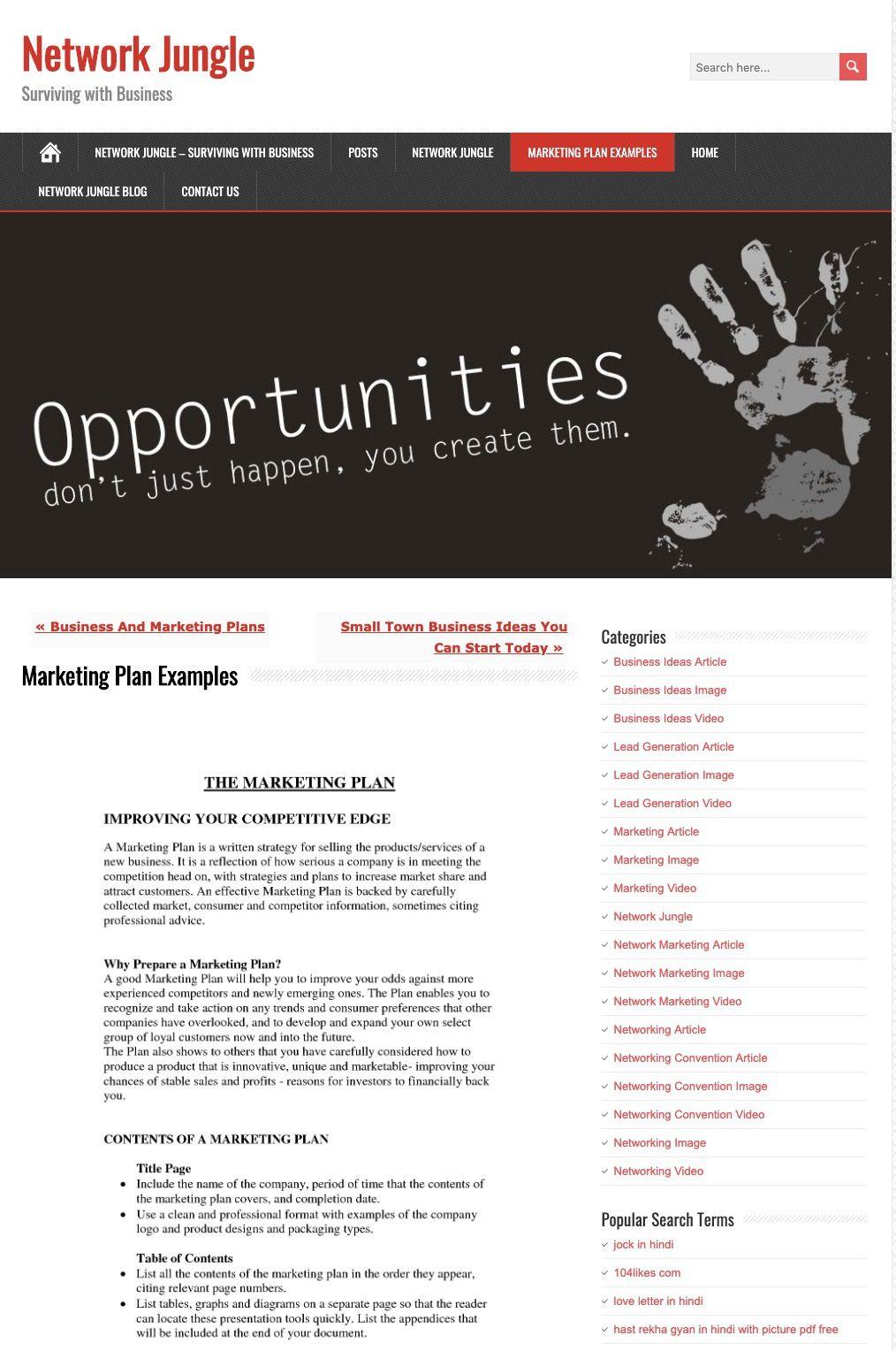 009 Sensational Digital Marketing Plan Example Pdf Image  Free Template Busines SampleFull