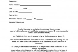 009 Sensational Employee Personnel File Template Picture  Uk Excel Form