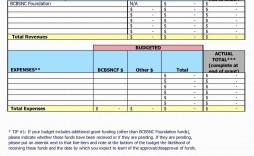 009 Sensational Sample Line Item Budget Template Highest Quality