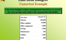 009 Simple Detailed Line Item Budget Example High Resolution