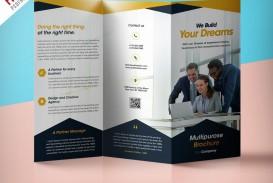 009 Singular Brochure Design Template Psd Free Download  Hotel