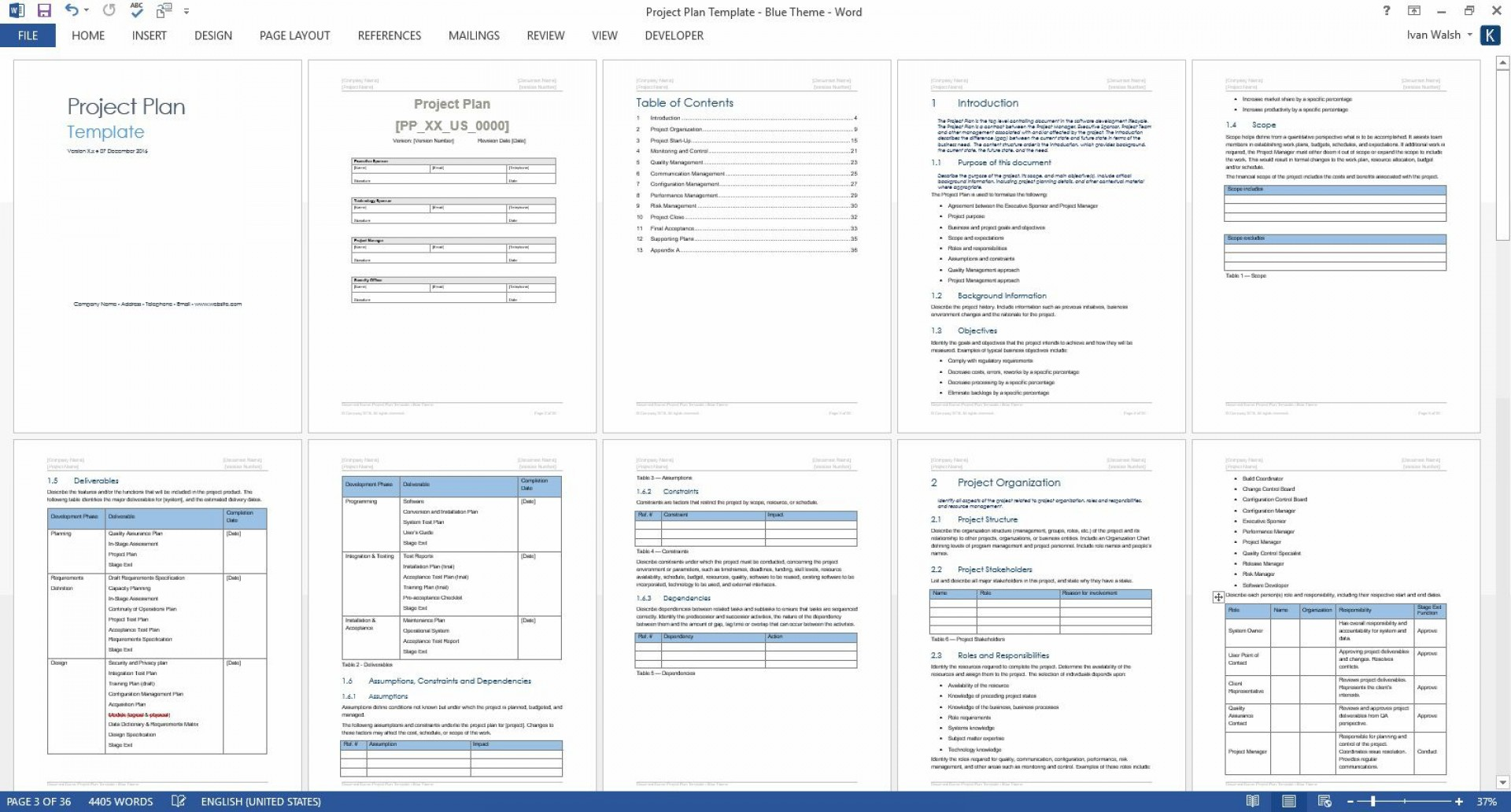 009 Singular Project Plan Template Word Highest Clarity  Simple Management Example Communication1920