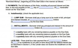 009 Staggering Promissory Note Template Free Image  Pdf Florida Blank Form