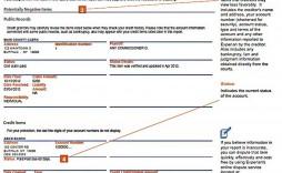 009 Striking Fake Credit Report Template Concept  Equifax Karma