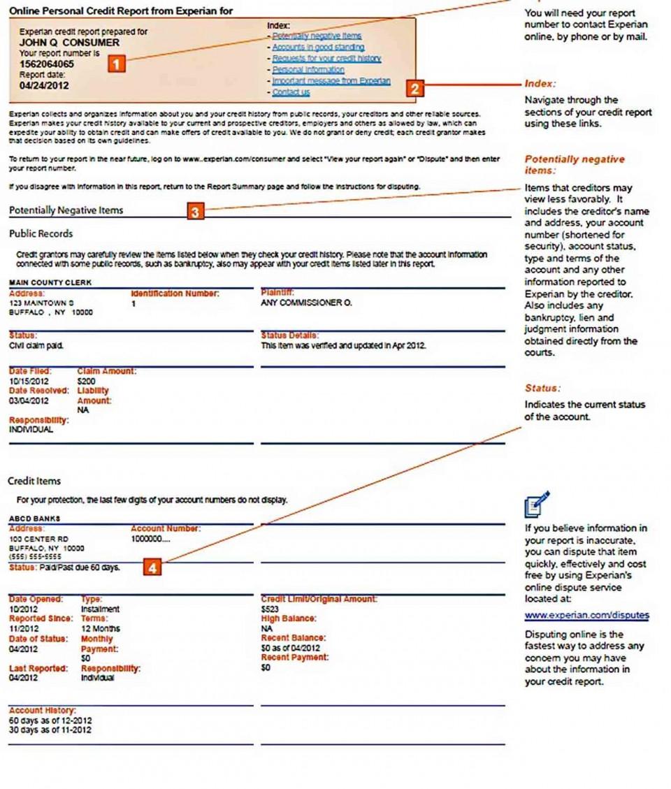 009 Striking Fake Credit Report Template Concept  Karma Equifax960