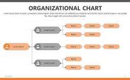 009 Stunning Org Chart Template Powerpoint Example  Free Organization Download Organizational 2010