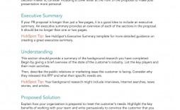 009 Stupendou Executive Summary Template Doc Example  Document Google