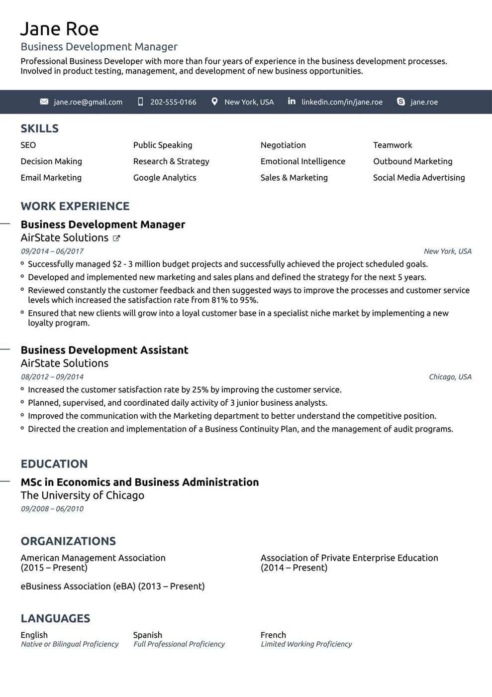 009 Surprising Professional Resume Template Example Highest Quality  Examples Layout Cv Writing FormatFull