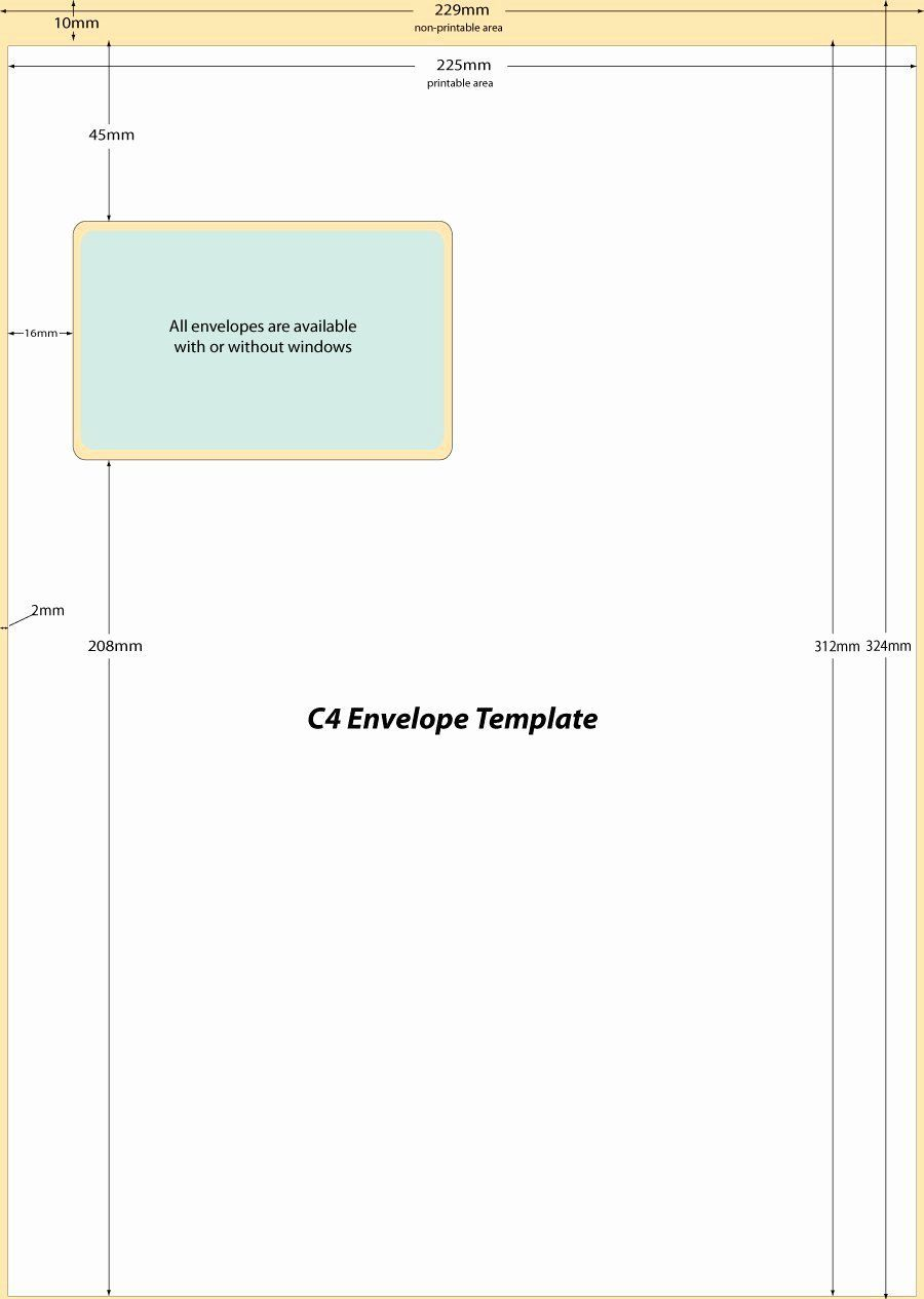 009 Top 10 Envelope Template Word Sample  Size Microsoft #10 Double WindowFull