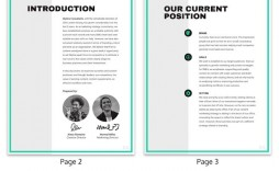 009 Top Marketing Campaign Plan Format High Definition  Template Pdf Direct Mail Email