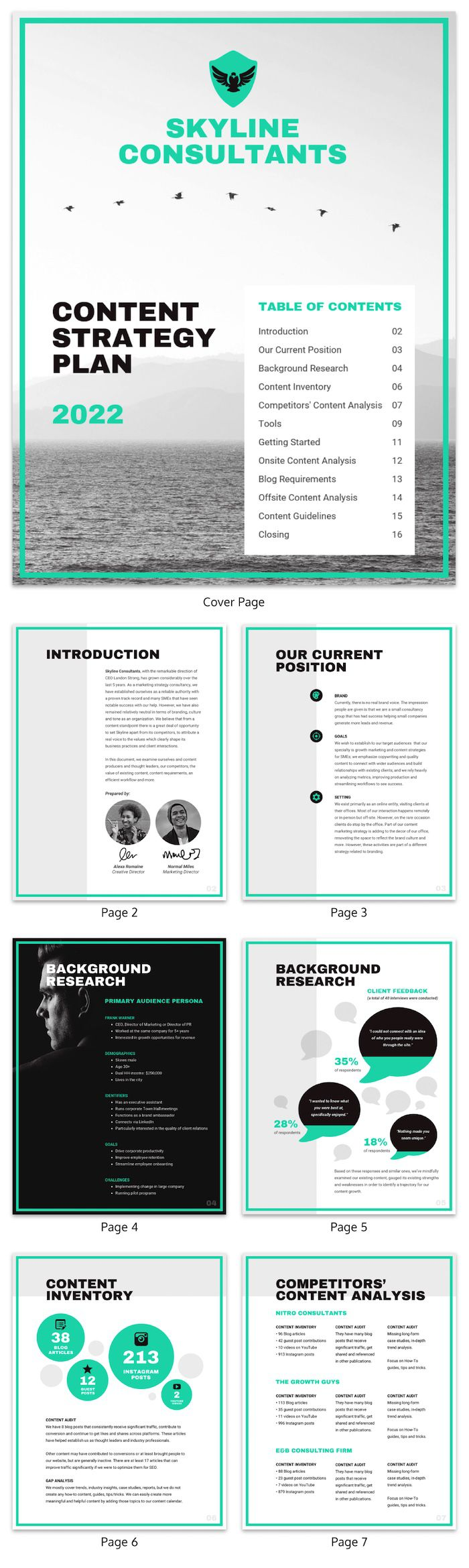 009 Top Marketing Campaign Plan Format High Definition  Template Pdf Direct Mail EmailFull