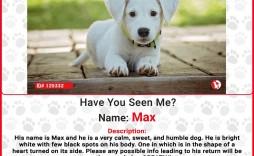 009 Unique Missing Dog Flyer Template Sample  Lost Poster