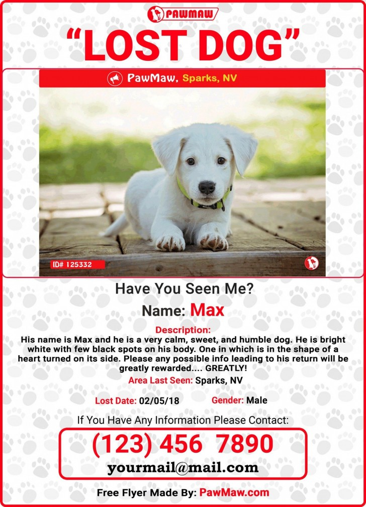 009 Unique Missing Dog Flyer Template Sample  Lost Poster728