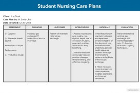 009 Unique Nursing Care Plan Template Picture  Free Pdf Download