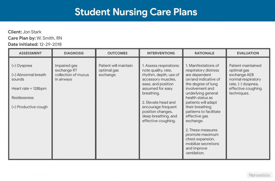 009 Unique Nursing Care Plan Template Picture  Free Pdf Download960