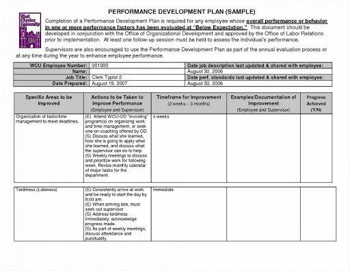 009 Unique Personal Development Plan Template Excel Concept  SampleFull