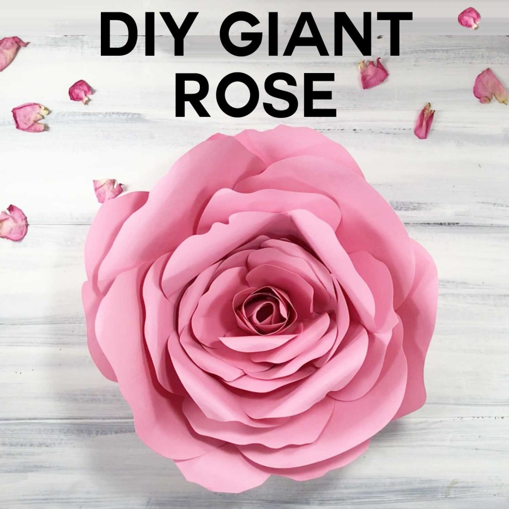 009 Unusual Giant Rose Paper Flower Template Free Photo Large