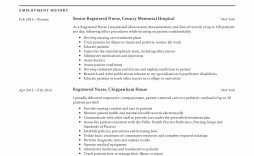 010 Archaicawful New Rn Resume Template High Resolution
