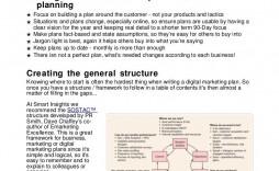 010 Dreaded Digital Marketing Busines Plan Example Photo  Template Free Sample Pdf