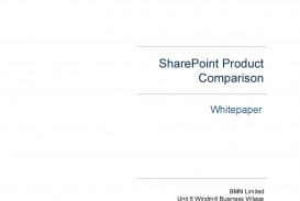 010 Fantastic Technical White Paper Template Example  Doc