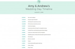 010 Impressive Wedding Timeline For Guest Template Free Photo  Download320