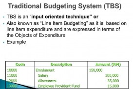 010 Incredible Line Item Budget Example  Format Meaning With
