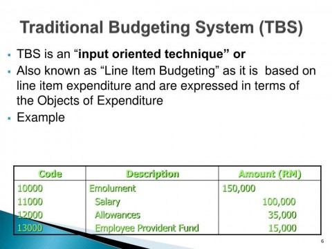 010 Incredible Line Item Budget Example  Format Meaning With480